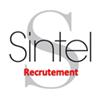 sintel-recrutement